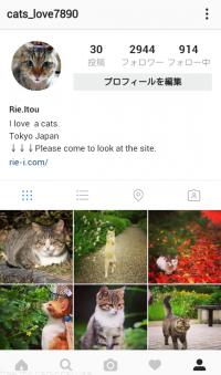 SNS集客法・instagram(インスタグラム)